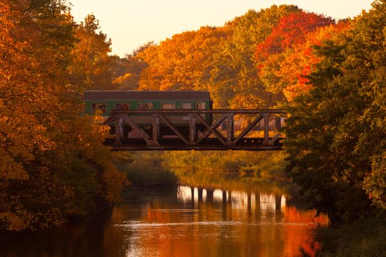 Autumn Train by Graeme MacDonald, via 500px