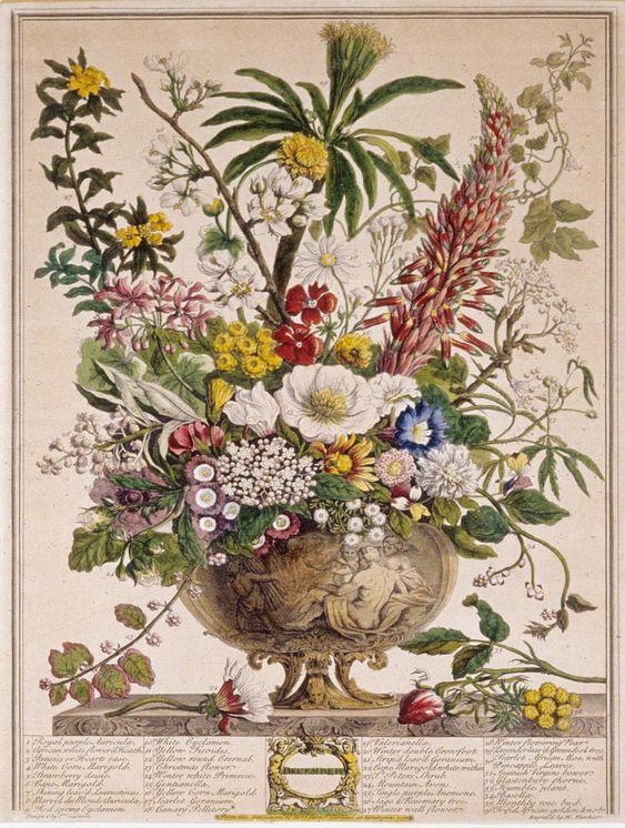 Resultado de imagen para robert furber gardiner kensington 1730
