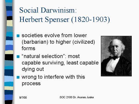 Social Darwinism Paper?