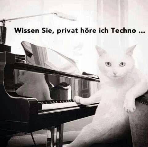 Wissen Sie, privat höre ich Techno...