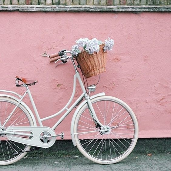 Wanna Go For A Ride Bravesoul Wearebravesoul Bicycle Pink Aesthetic Vintage Bike