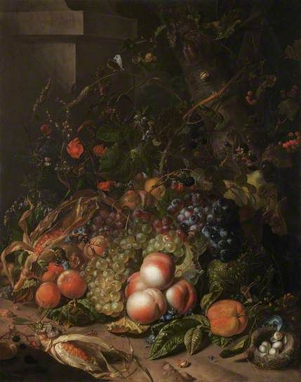 Still Life with Fruit, a Bird's Nest and Insects - to be found at Dudmaston national trust in Shropshire