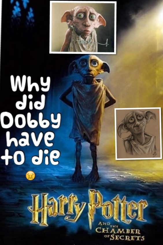The question on my lips as soon as I read the last book was why did Dobby have to die