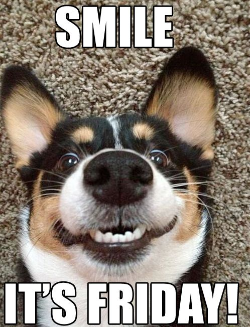 Finally Friday Funny Meme : Smile it s finally friday get your free bookplates here