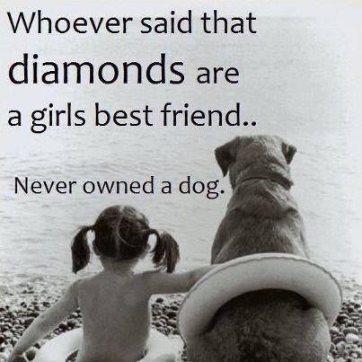 a girl's best friend ♥