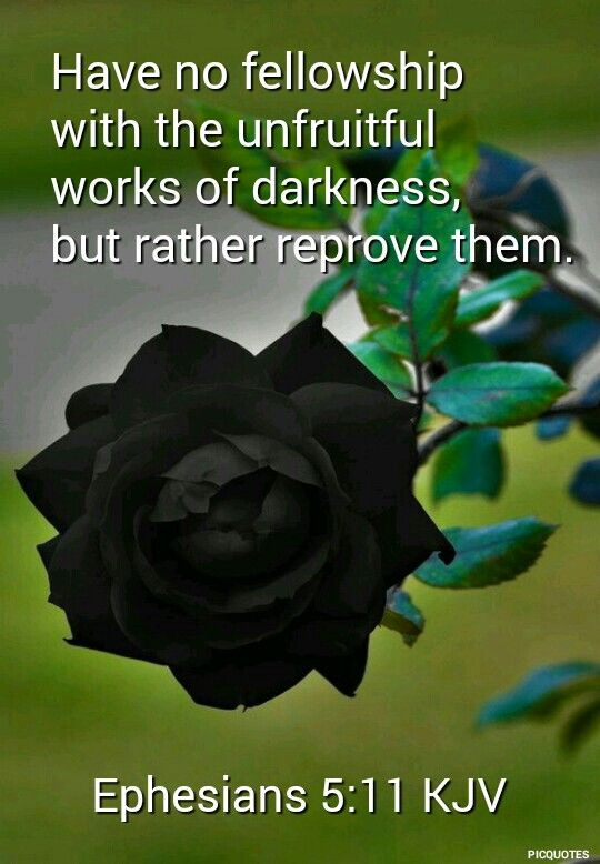 Ephesians 5:11 kjv And have no fellowship with the unfruitful works of darkness, but rather reprove them.