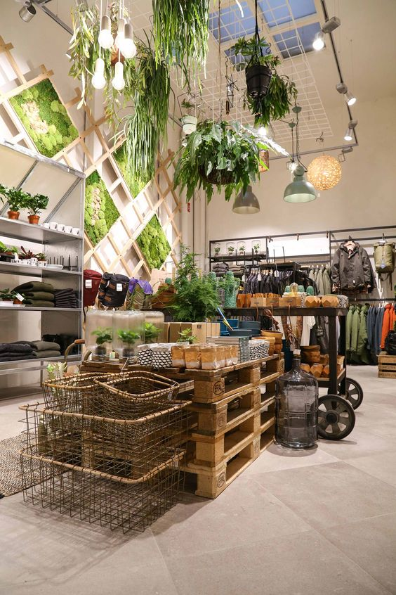 Juttu a sustainable shop in Antwerp Belgium decorated with hanging plants and a green wall