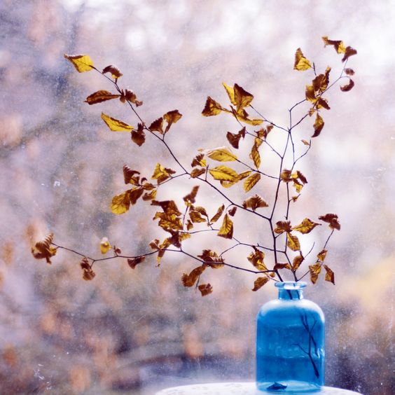 the window of november no. 1 by bebefromtheblock on DeviantArt