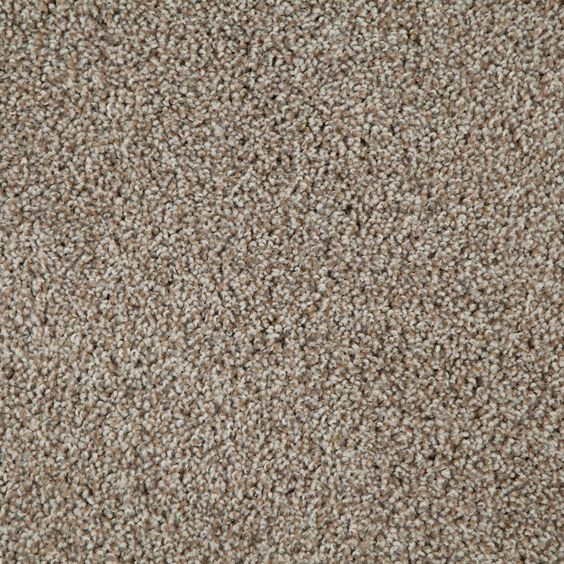 Stainmaster Rave Review Active Family Glen Green Berber Carpet Sample S663023glen Gre Reen Carpet Samples Carpet Green Carpet