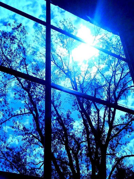 Winter's Fluorescence