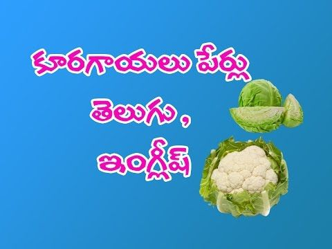 Vegetables Names In Telugu And English Youtube Name Of