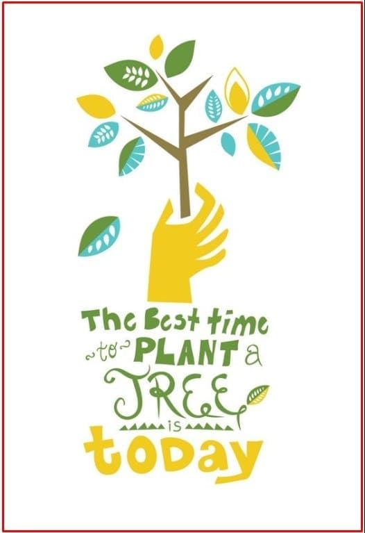 200 Contoh Gambar Poster Dan Slogan Bertema Lingkungan Hidup Lingkungan Hidup Poster Pelestarian Lingkungan Hidup
