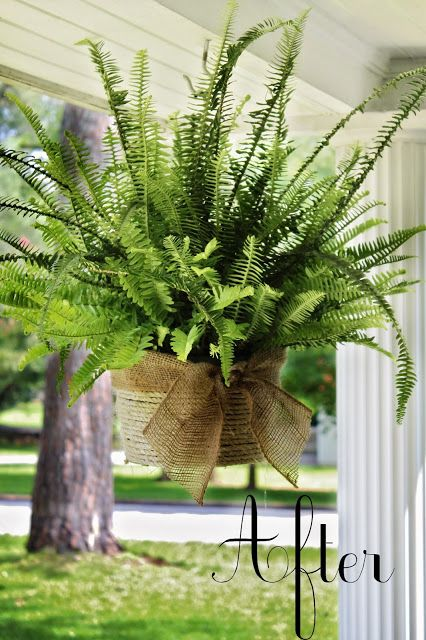 Smart and pretty idea,  wrap ugly plastic planters from store in jute and tie with burlap. fabulous!