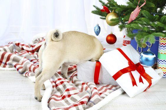 Naughty, naughty! No peeking before Christmas! (deadhpool)