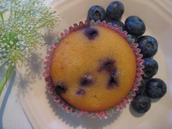 GFCF grain free lemon blueberry muffins