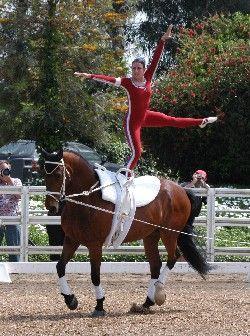 Megan Benjamin - World Equestrian Games gold medalist 2006