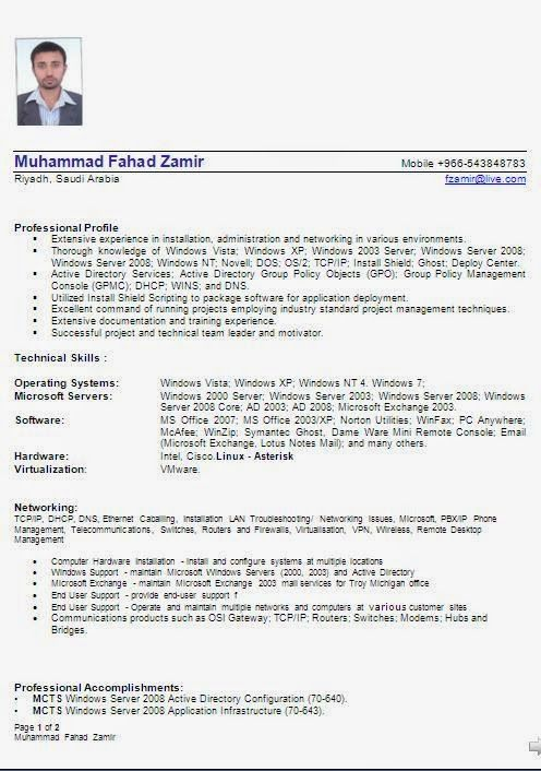 cv building Sample Template Example ofExcellent Curriculum Vitae - computer hardware and networking resume format