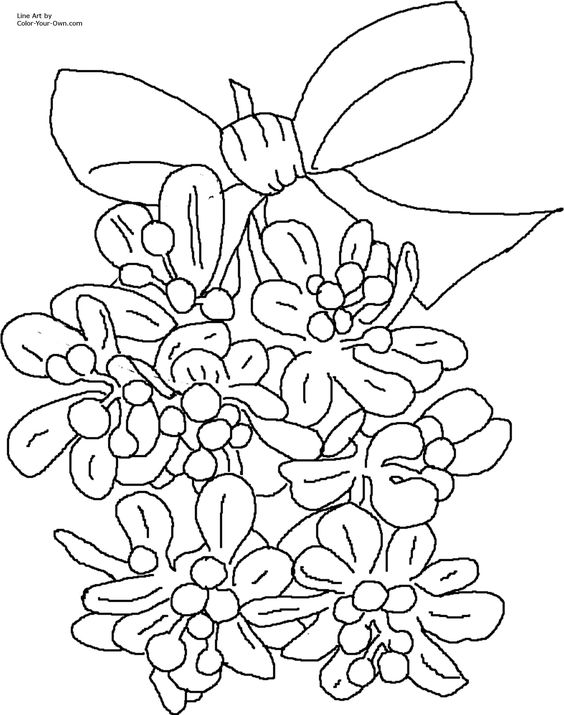 This is a graphic of Sly Mistletoe Coloring Page