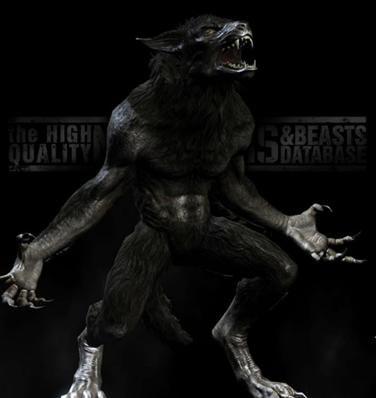 Werewolf Vampire Hybrid   werewolf hybrids hybrids are a ...