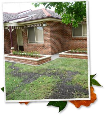 Welcome Great Yard eScape, we are Sydney based landscape designer and builder; we provide creative solutions to meet our clients' expectations. Our work including commercial landscaping, residential landscaping, paving, retaining walls, drainage and all insurance! http://greatyardescapes.com.au/