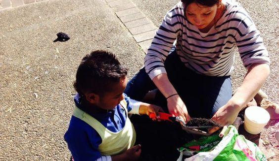 Ashfield Public School | Enviroweek