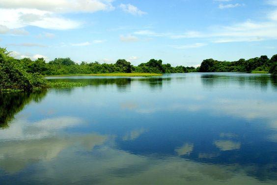 Retratos do Pantanal | DOC.