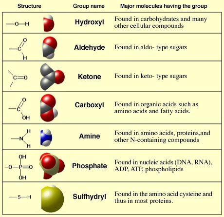 Common Compounds