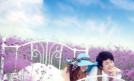 Romantic lavender my like