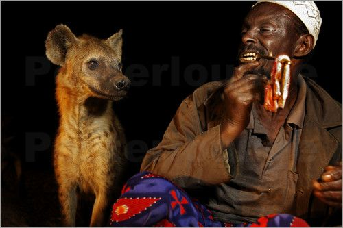 hienas y hombres: Haglund Getty, Harar Johnny, Animalillos P, Hyena Men, Crazy Things