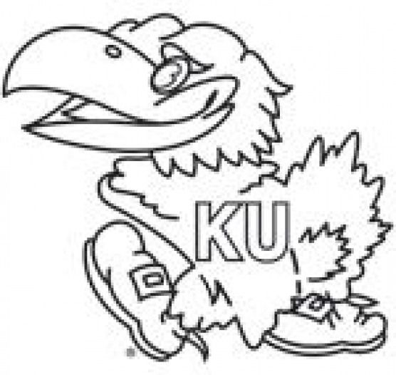 Kansas Jayhawk Coloring Pages My Beloved University Of Kansas