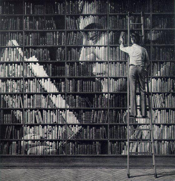 ¡Me encantaría una biblioteca así! ^^