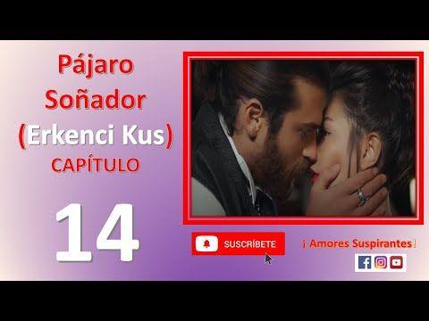 Erkenci Kus Pájaro Soñador Youtube Español Series Completas En Español Pajaros