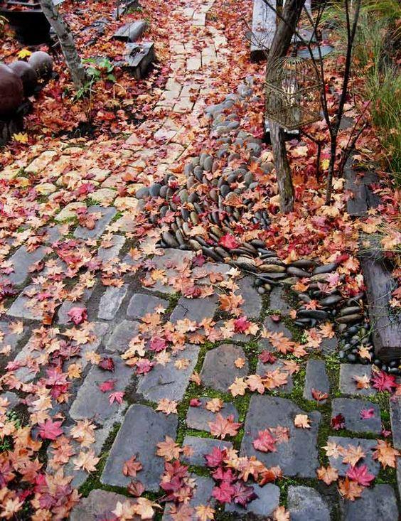 秋 ~ Autumn