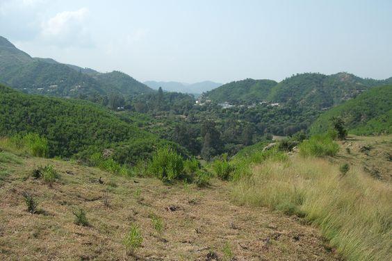 my vilage hazara kpk pakistan 29