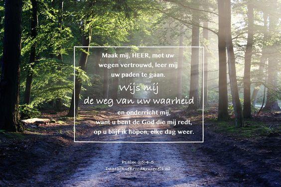 Maak mij, HEER, met uw wegen vertrouwd, leer mij uw paden te gaan. Wijs mij de weg van uw waarheid en onderricht mij, want u bent de God die mij redt, op u blijf ik hopen, elke dag weer. Psalm 25:4-5  #Hoop, #Redding, #Waarheid, #Weg  https://www.dagelijksebroodkruimels.nl/psalm-25-4-5/