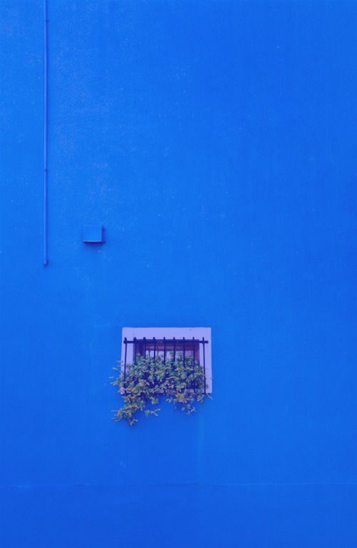 Blue Pinterest Patriciamaroca Blue Aesthetic Tumblr Blue Aesthetic Baby Blue Aesthetic
