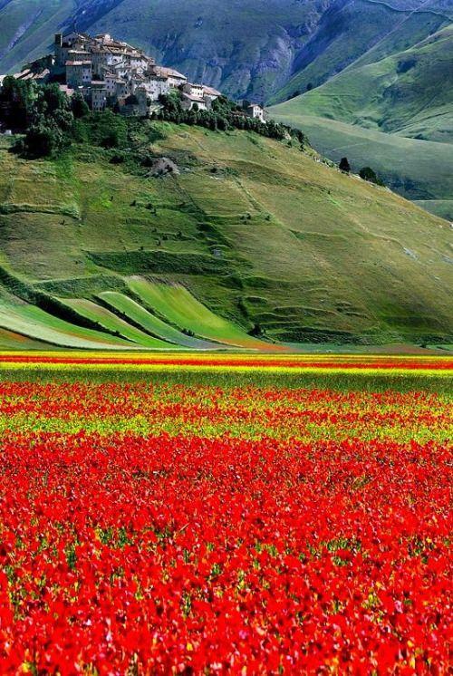 Castelluccio di Norcia, Umbria, Italy.