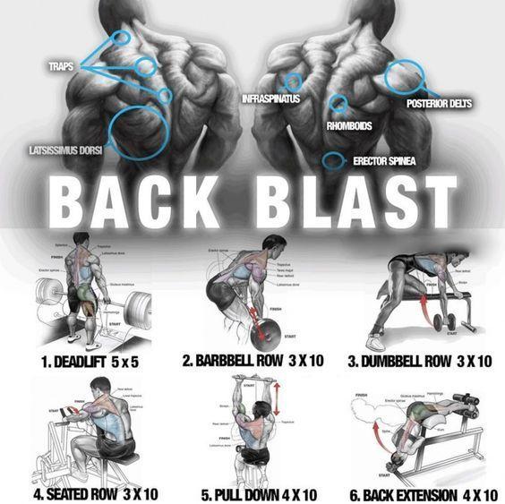 Big Back Blast Training Healthy Fitness Workout Plan Fitnessworkouts Ectomorph Workout Back Workout Weight Training Workouts
