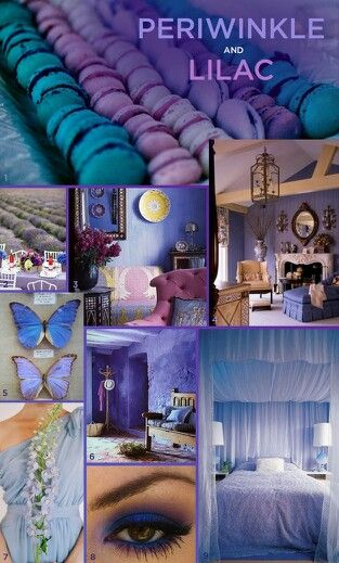 Periwinkle  Lilac