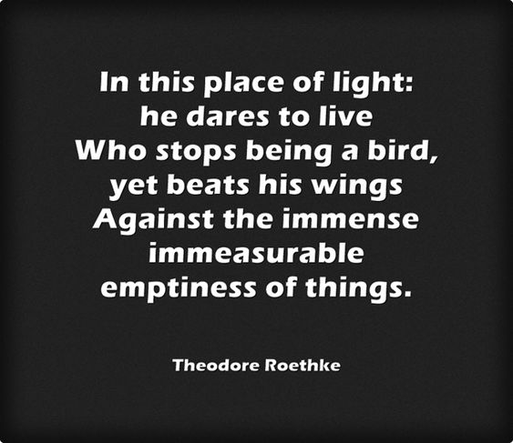 ...the immense immeasurable emptiness of things... ― Theodore Roethke