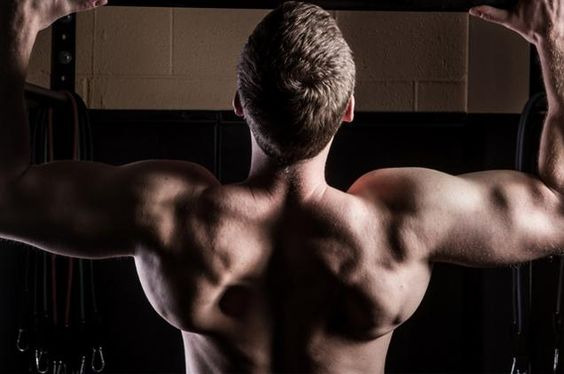 One Great Answer: How Do I Get Better At Pullups? | LIVESTRONG.COM...This is what I've been waiting for!
