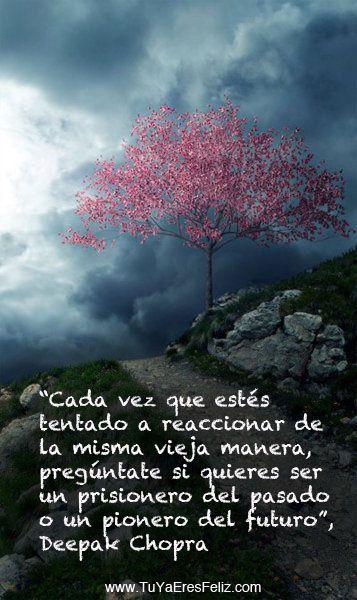 Angie: