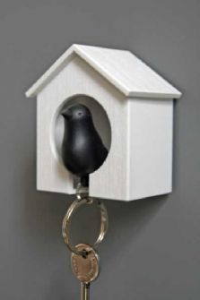 "SO clever! ""key"" Sparrowhttp://pinterest.com/andinkins09/home/# lives in the little bird house"