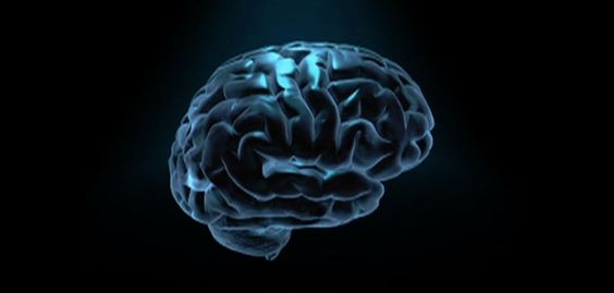 How cognitive therapy works in the brain