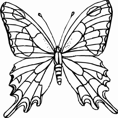 Coloring Page Of A Butterfly Best Of Butterfly Coloring Pages For Kids Disney Coloring Pages Butterfly Coloring Page Flower Coloring Pages Butterfly Printable