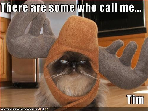 There Are Some Who Call Me… Tim