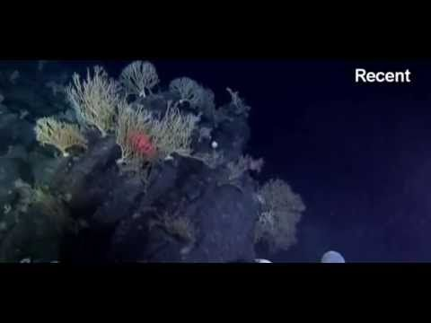 伝説の大陸「アトランティス」の痕跡!?大西洋の海底で大陸の痕跡発見(ブラジル) : カラパイア