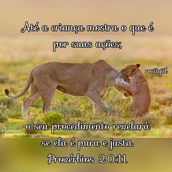 #Provérbios #Sabedoria #Retidão #Verdade #AtitudeDizMaisDoQuePalavras #DeusFiel #rosiigiil