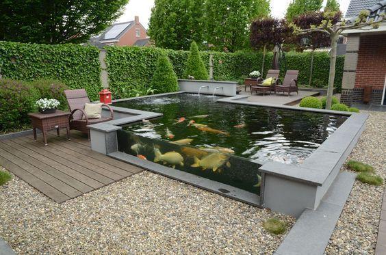 38+ Backyard koi pond designs ideas in 2021