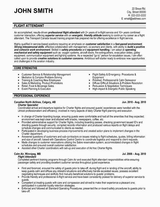 Professional Resume Example Instant Download 1 Page Resume Example For Ms Word Diy Resum In 2020 Flight Attendant Resume Professional Resume Examples Resume Examples